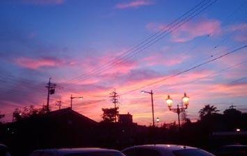 sunset355.jpg